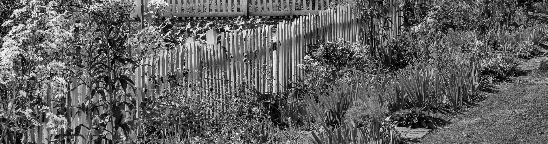 An image of a completed garden, with a selection of carefully chosen plants and a quaint styled picket fence.